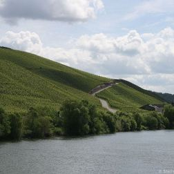 mosel-from-zeltingen-rachtig-to-traben-trarbach-072_3617476817_o