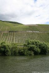mosel-from-zeltingen-rachtig-to-traben-trarbach-073_3617477221_o