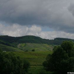 mosel-from-zeltingen-rachtig-to-traben-trarbach-080_3618300012_o