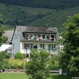 mosel-from-zeltingen-rachtig-to-traben-trarbach-087_3617481847_o