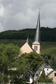 mosel-from-zeltingen-rachtig-to-traben-trarbach-096_3617486687_o