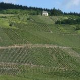 mosel-from-zeltingen-rachtig-to-traben-trarbach-098_3618308402_o