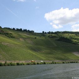 mosel-from-zeltingen-rachtig-to-traben-trarbach-101_3617488833_o