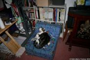 my-birthday-2010---preparations-with-cat-002_4300545935_o