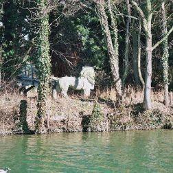 river-thames-at-wolvercote-001_112973970_o