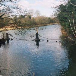 river-thames-at-wolvercote-004_112974030_o