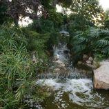 rose-garden-monte-carlo-002_5092820814_o