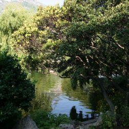 rose-garden-monte-carlo-004_5092821272_o