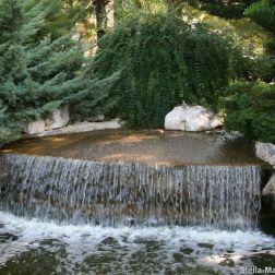 rose-garden-monte-carlo-006_5092821754_o