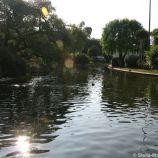 rose-garden-monte-carlo-012_5092226105_o