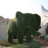 rose-garden-monte-carlo-015_5092226831_o