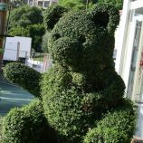 rose-garden-monte-carlo-016_5092227161_o