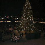 schoenbrunn-palace-christmas-market-004_315029590_o