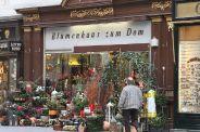 stephansplatz-001_315142119_o