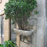 valbonne-october-2010-016_5092246845_o