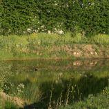 zaltbommel-netherlands-016_482321094_o