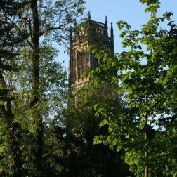 zaltbommel-netherlands-021_482321224_o
