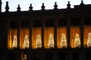 BLENHEIM PALACE CHRISTMAS TRAIL 2017 009