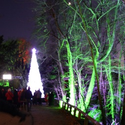 BLENHEIM PALACE CHRISTMAS TRAIL 2017 018