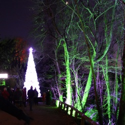 BLENHEIM PALACE CHRISTMAS TRAIL 2017 019