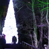 BLENHEIM PALACE CHRISTMAS TRAIL 2017 022