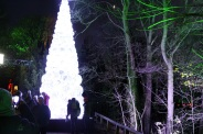 BLENHEIM PALACE CHRISTMAS TRAIL 2017 022