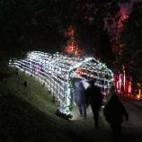 BLENHEIM PALACE CHRISTMAS TRAIL 2017 033