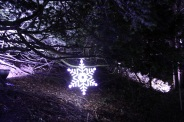 BLENHEIM PALACE CHRISTMAS TRAIL 2017 039
