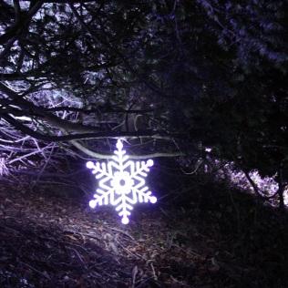 BLENHEIM PALACE CHRISTMAS TRAIL 2017 039
