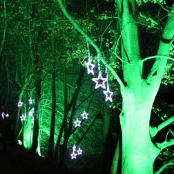 BLENHEIM PALACE CHRISTMAS TRAIL 2017 056