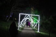 BLENHEIM PALACE CHRISTMAS TRAIL 2017 069