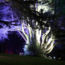 BLENHEIM PALACE CHRISTMAS TRAIL 2017 070