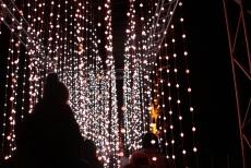 BLENHEIM PALACE CHRISTMAS TRAIL 2017 161