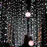 BLENHEIM PALACE CHRISTMAS TRAIL 2017 162