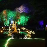 BLENHEIM PALACE CHRISTMAS TRAIL 2017 181