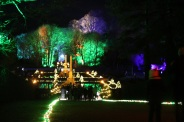 BLENHEIM PALACE CHRISTMAS TRAIL 2017 181