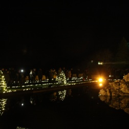 BLENHEIM PALACE CHRISTMAS TRAIL 2017 184