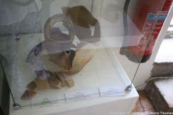 BLAYE ARCHAEOLOGICAL MUSEUM 057