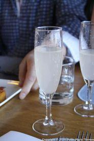 BORDEAUX DINNER CRUISE, GIN FIZZ 002