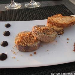 HOTEL RESTAURANT LA CITADELLE, BLAYE, FOIE GRAS POACHED IN BLAYE RED WINE, DRIED FRUIT CRUMBS 021