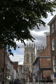 KING'S SQUARE, YORK 002