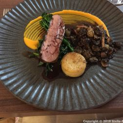 RASCILLS, HONEY GLAZED GOOSNARGH DUCK, BLACK TRUFFLE, HERB PUY LENTILS, BABY ONIONS, MUSHROOM, POTATO, CARROT PUREE AND RED WINE SAUCE 010