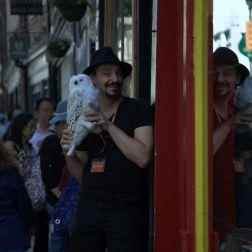 THE SHAMBLES, YORK 002
