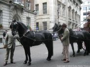 WORSHIPFUL COMPANY OF CARMEN, CART MARKING 2018 175
