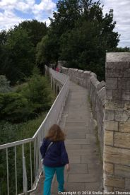 YORK CITY WALLS 071