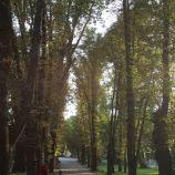 DYTYNETS, CHERNIHIV 030