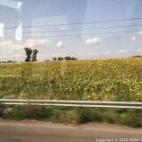 ON THE ROAD, THE UKRAINE 057