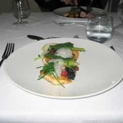 HIBISCUS, PAN-ROASTED WOLF FISH, BLACK RISOTTO, FENNEL AND CHORIZO, SEA FOAM 011