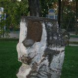 KIEV 353