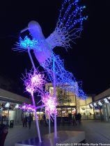 CHRISTMAS LIGHTS, BRUNSWICK SQUARE 006